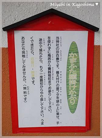 鍋蓋神社3