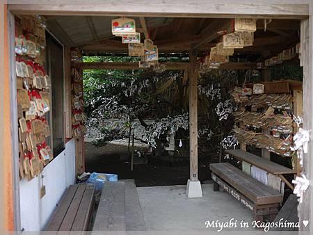 鍋蓋神社7