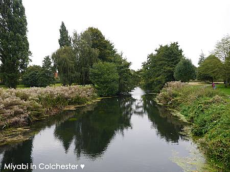 Colchester-18.jpg