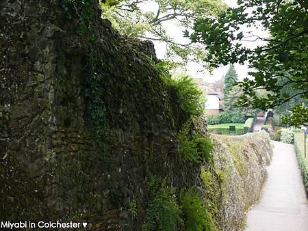 Colchester-23.jpg