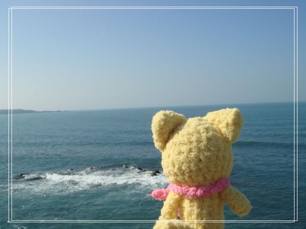 海with孤單小貓