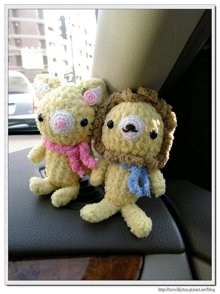 小獅貓in the car.jpg