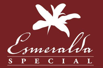 esmeralda special_small.jpg