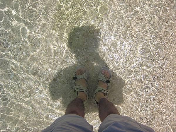 海中的影子
