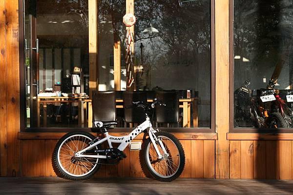 綠森活腳踏車