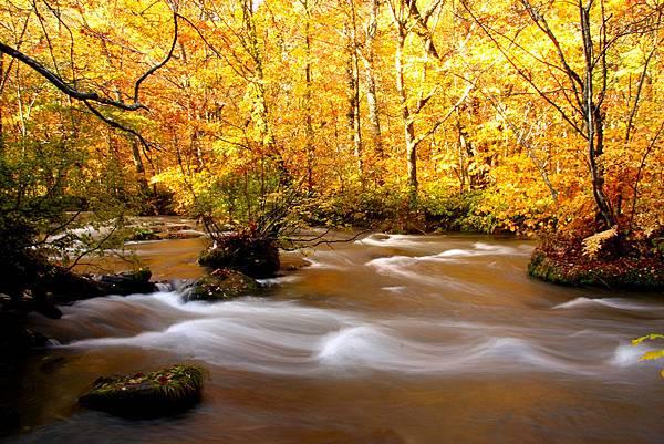 青森奧入瀨溪的秋日風光是全球攝影迷的最愛。.jpg