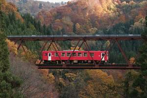 從內陸線車窗就可觀賞到滿山滿谷紅葉美景。