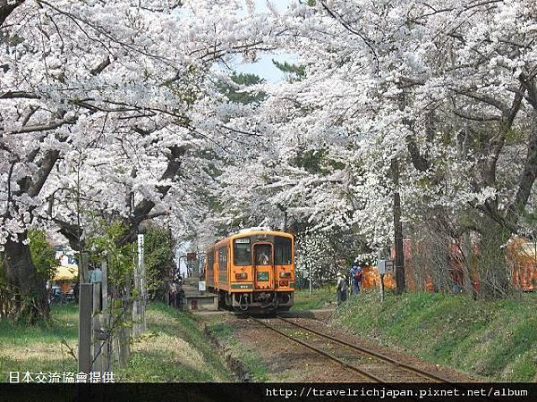 芦野公園.jpg