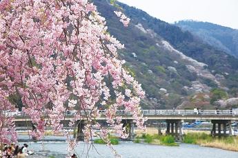 嵐山渡月橋