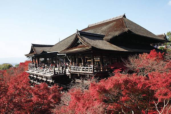 E-清水寺kiyomizu_autumn_