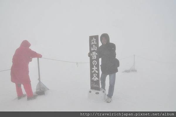 雪之大谷立牌