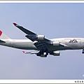 JAL JA8078客機.jpg