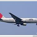 JAL JA8231客機.jpg