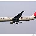 JAL JA8266客機.jpg
