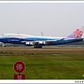 中華航空B-18210鯨魚彩繪機01.jpg