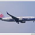 中華航空B-18610薰衣草彩繪飛機.jpg