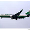長榮航空B-16112貨機.jpg