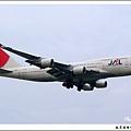 JAL JA8921客機01.jpg