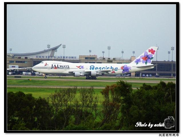 日本航空JA8150紫花鳥彩繪飛機.jpg
