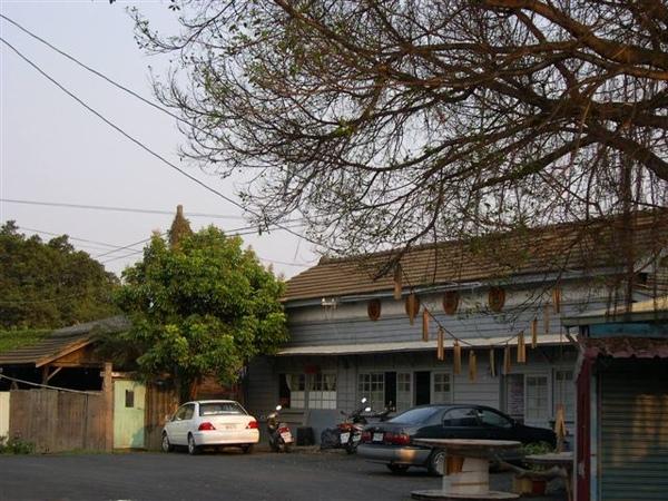 舊車站與老樹