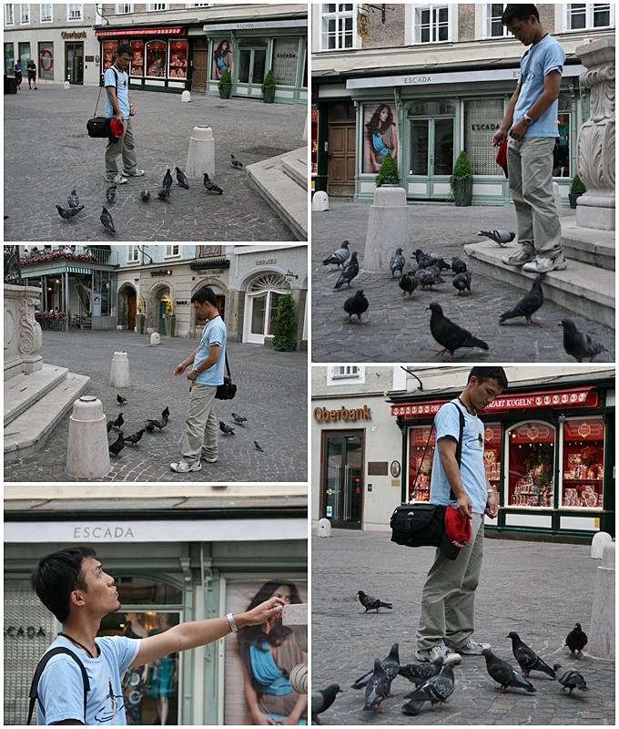 餵鴿.jpg