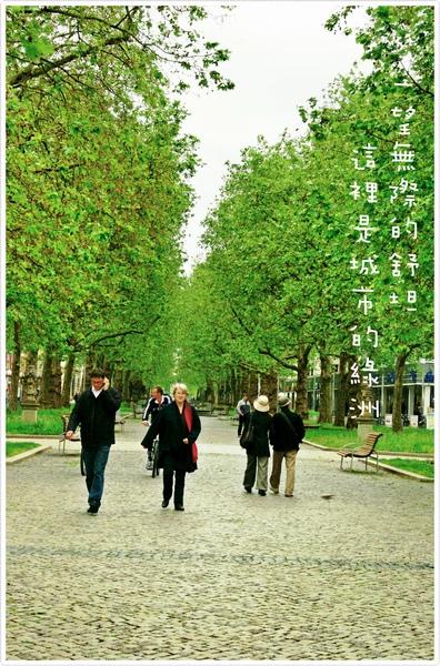 新城區-綠意.jpg