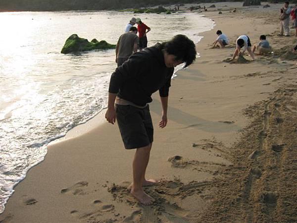 老達犁田過後的沙灘