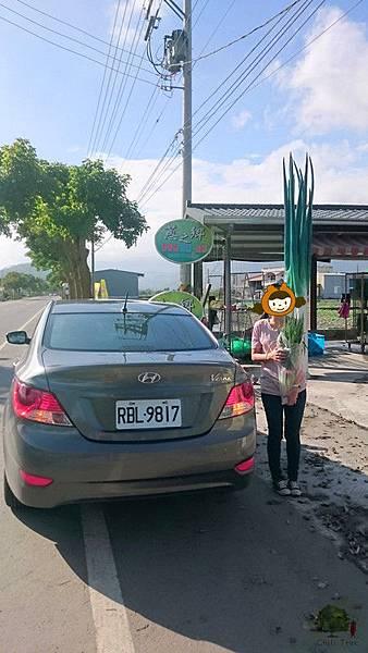 105.12.03-12.04有車就是任性-帶著Verna去旅行 (220)