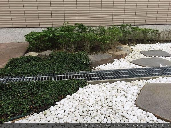 苑裡賴公館-3.jpg