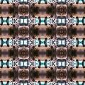 pig_kaleidoscope_600.jpg
