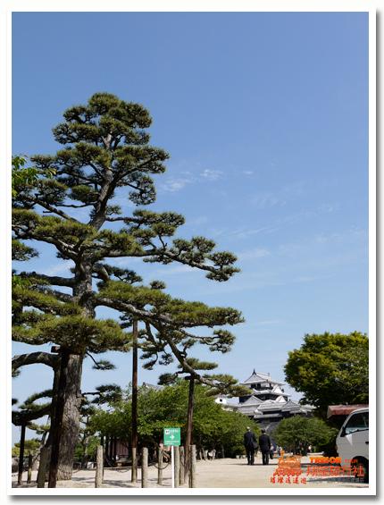 松山市10.jpg