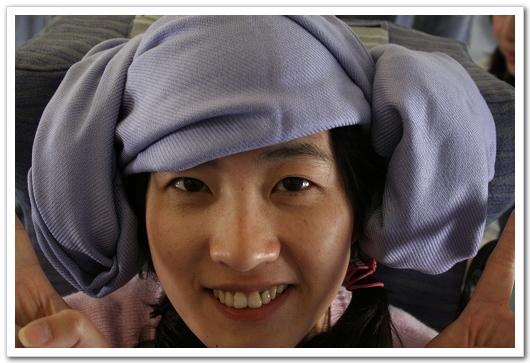 打擊H1N1羊角頭戴法1
