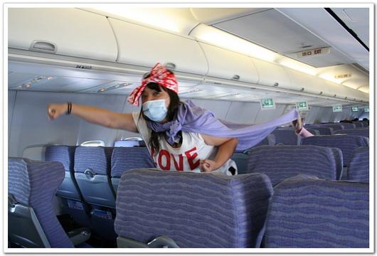 打擊H1N1小飛狹1