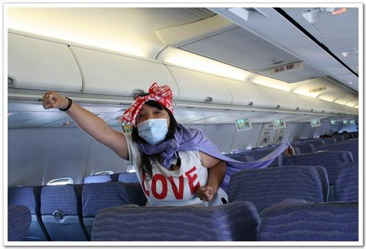 打擊H1N1小飛狹3