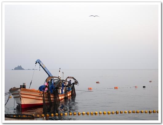 若狹漁師 邊邊小船.jpg