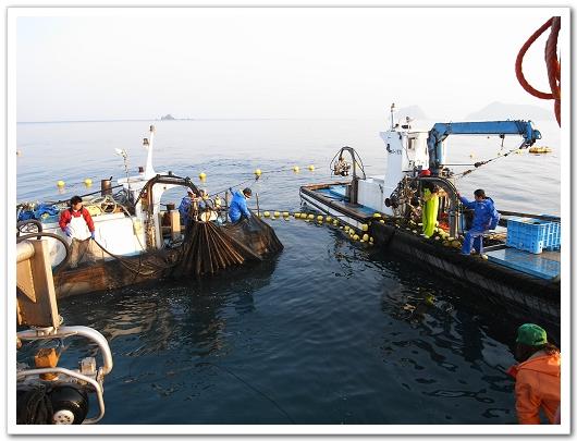 若狹漁師 收網2.jpg
