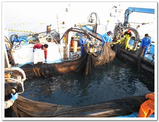 若狹漁師 收網3.jpg