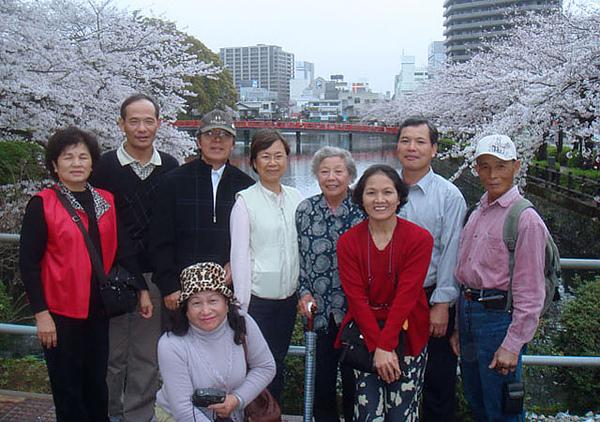 96.4.2小田原城賞櫻(23).JPG