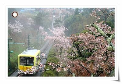 天橋立纜車.JPG