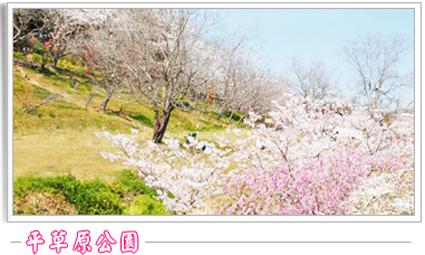 平草原公園.jpg