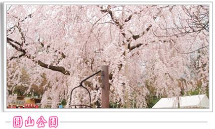 圓山公園.jpg