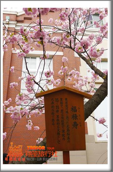 2011造幣局10福祿壽.jpg