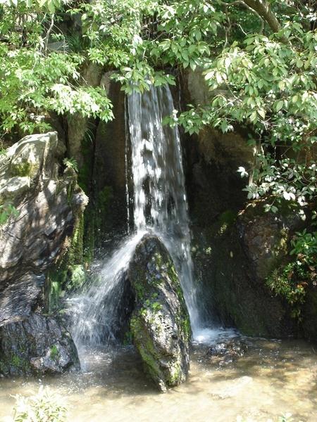 龍門瀑布,鯉魚石.JPG