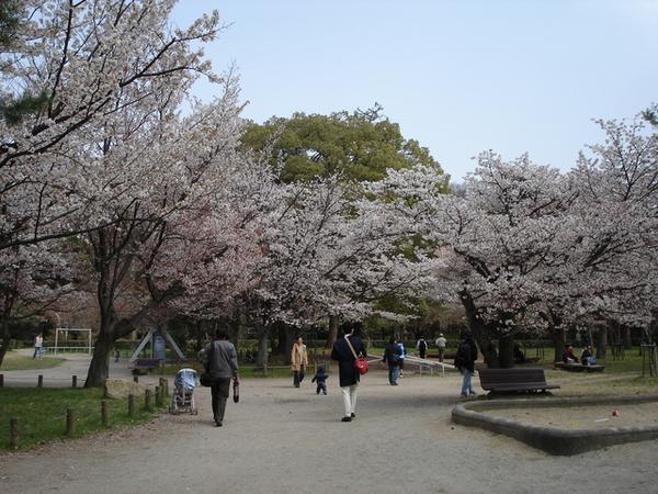 京都御苑3.JPG