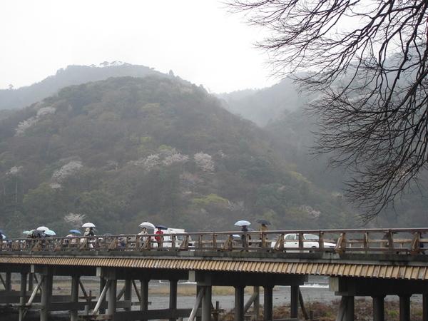 渡月橋.JP