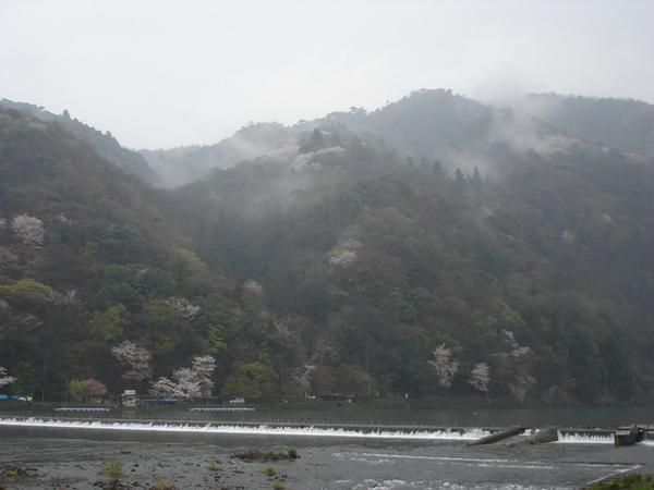 雨天的嵐山 雨茫茫的.JPG