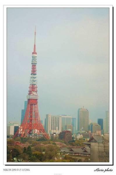 飯店(芝公園grand hotel)房間的東京tower