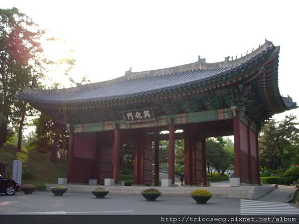 DSCN6968