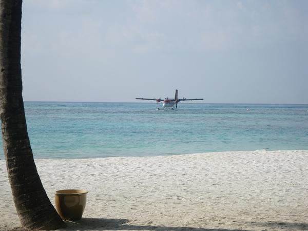 回到碼頭的時候 剛好看到水上飛機降落