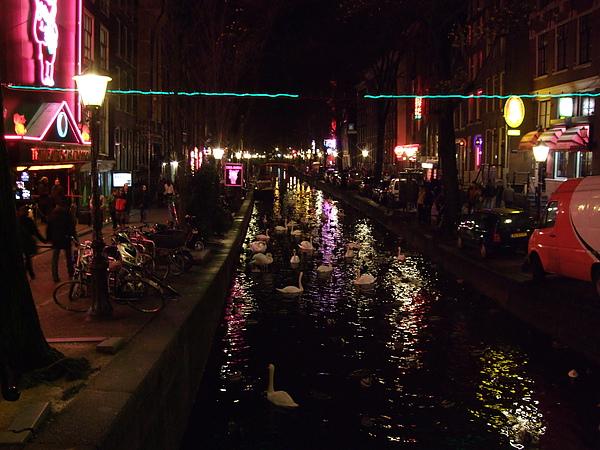 Netherlands 347.jpg